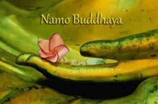 buddha_hand_nirvana_01