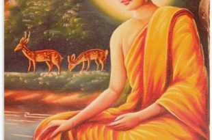 buddha-painting-cr00000204-medium-original-imae6cu9ffsffjt9
