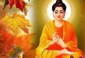 buddha4